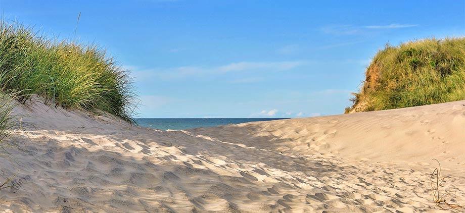 Die Sanddünen an der Nordseeküste bei Den Helder